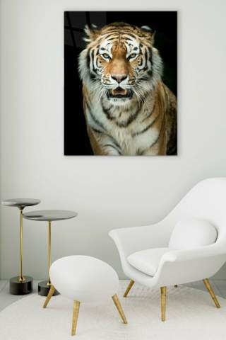 Tiger Glass Painting